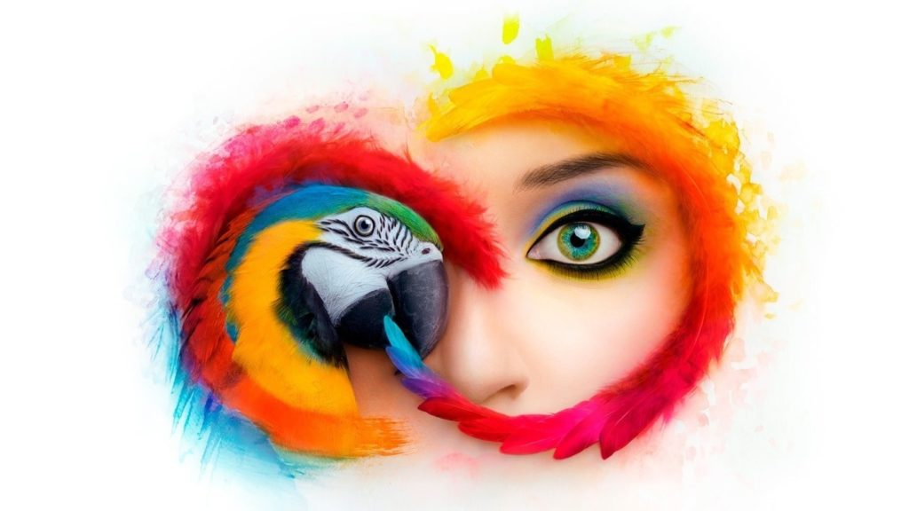 Adobe Creative Cloud A Pefect Platform To Test Learn And Create